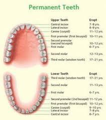 Dentistry For Kids Dentist In Mechanicsville Va