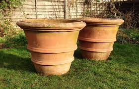 tall terracotta planter. Wonderful Planter To Tall Terracotta Planter