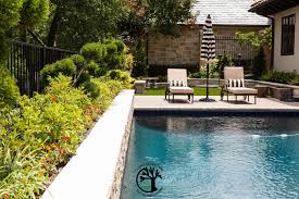 making your backyard an oasis pool