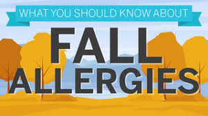 Austin Tx Allergy Chart Pollen Count And Allergy Info For Georgetown Tx Pollen