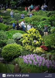 tourists walking down through lush greenery at butchart gardens in victoria bc
