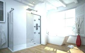 stand up shower remodel designs without doors bathtub door with step in stand up shower remodel