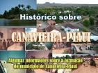 imagem de Canavieira Piauí n-2