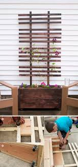 diy trellis and planter box
