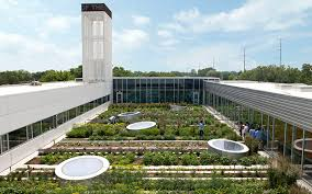 green infrastructure green roofs and