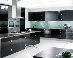 Modern Black Kitchen Cabinets Furniture Black Modern Kitchen Cabinets With Wooden Countertop