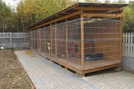 diy large outdoor dog kennel designs