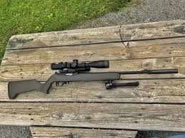 the ruger 10 22 is an industry leader in the world of semi automatic 22lr s however compared to the ar 15 and all its clones there are very few