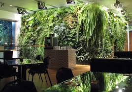 informal green wall indoors. Informal Green Wall Indoors. Indoor With Simple Attached Wooden Vase Indoors F N