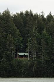 Best 25 Secluded cabin ideas on Pinterest Wilderness Escape.