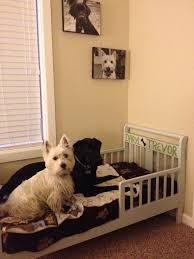 luxury dog bed furniture. Luxury Dog Bed Furniture Best Of Turn A Toddler Into Pets  Pinterest Luxury Dog Bed Furniture