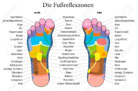 Foot Organ Chart Foot Reflexology Chart With Accurate Description German Labeling