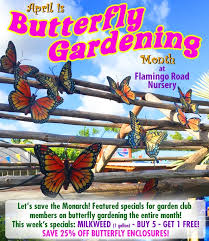 it s erfly gardening month at flamingo road nursery garden club specials galore