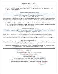 Sample Resume Management Executive Resume Samples Professional Resume Samples