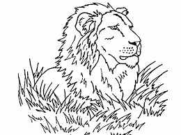 Small Picture Lion Coloring Pages Printable Coloring Home