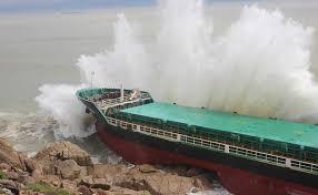 Thảm họa chìm tàu bão số 12 ở Quy Nhơn, do đâu? | Thời sự | PLO