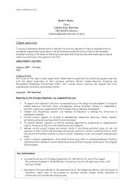 Resume Set Up Inspiration Resume Objective Server R Quickplumberus