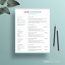 Macbook Pages Cv Template Best Apple Resume Templates