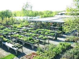 landscape garden centers sioux falls cozy landscape garden center falls landscape gardens falls landscape garden center