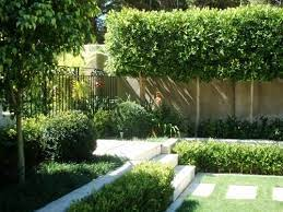 patio landscape design