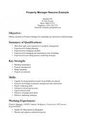 Resume Summaries Examples Free Resume Templates 2018