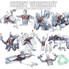 chest workout healthy fitness exercises gym bench press fitness chest workouts workout and fitness