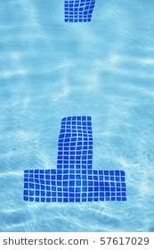 tile lane markings on bottom of a pool