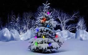 Christmas Tree Images Hd Wallpaper ...