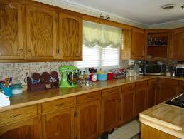 painting wood kitchen cabinetsShould I paint my custom solid wood kitchen cabinets