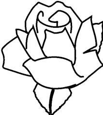 rose flowers coloring pages flower of