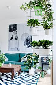 Small Picture 15 Indoor Garden Ideas for Wannabe Gardeners in Small Spaces