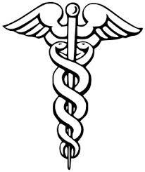 the government provide health care essay should the government provide health care essay