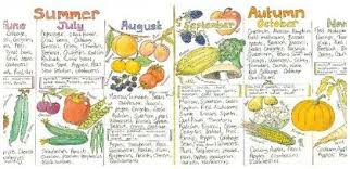 Seasonal Fruit And Veg Chart Uk Uk Seasonal Fruit And Vegetable Chart Vegetable Chart