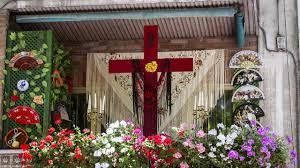 www.granadahoy.com/2020/05/03/vivir/Flores-ador...
