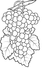 Coloriage Raisin Imprimer