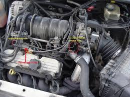 2000 impala vacuum hose diagram 2000 image wiring what s this vacuum line called 3800pro com forum on 2000 impala vacuum hose diagram