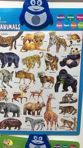 Kids English Animal Learning Machine Wall Chart Toys Educational Charts Buy Kids Learning Wall Chart Childrens Educational Wall Charts Kids Fruits