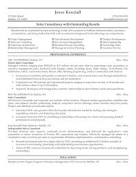 Consultant Cv Sales Consultant Resume Free Excel Templates