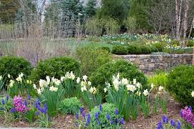 Small Picture 10 Beautiful Ways to Landscape With Bulbs