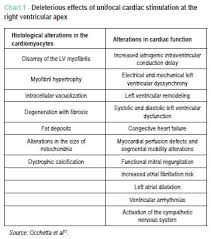 Left Vs Right Heart Failure Chart Alternative Endocardial Sites For Artificial Cardiac Stimulation