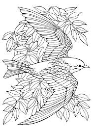 Small Picture Bird nest coloring pages ColoringStar