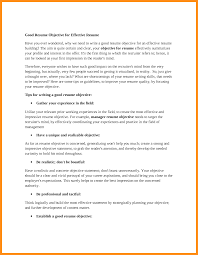 what to write on resume objective agenda example what to write on resume objective how to write an objective essay how to write an objective essay png