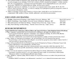 breakupus winsome resume template high school student blank sample breakupus lovable shuhan resume translational science archaic completely resume templates besides healthcare administrator resume