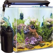 best fish tank filter image