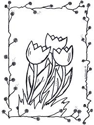 Tulpen Kleurplaten Bloemen