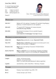 examples of resumes resume a sample cv captivating sample cv curriculum vitae resume template in french cv en francais cv sample template cv sample
