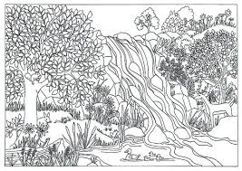 Nature Coloring Pages For Adults Items Similar To Printable