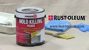 what to use to kill mold. Exellent Mold How To Video To Apply Zinsser Mold Killing Primer Inside What Use Kill L