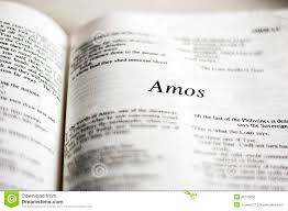 Image result for book of amos