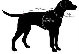 dog breed size chart http barkingmadclothing co uk sizechart